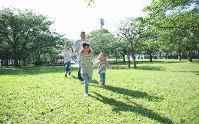 Trustmark Voluntary Universal Life Insurance Plan